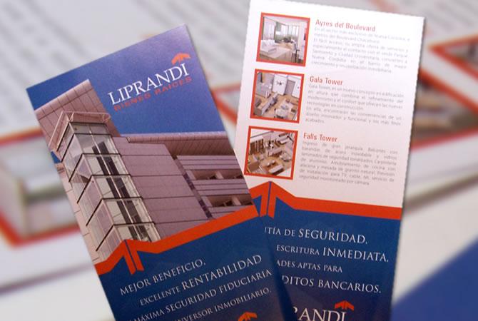 Diseño de folletería institucional.